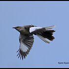 Mockingbird by Karen Keaton