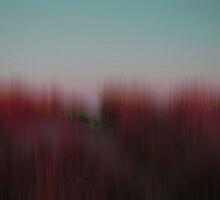 hideout by FedericoFaggion