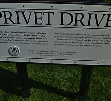 The Privet Drive sign.  by clarebearhh