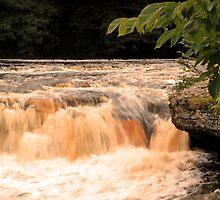 Aysgarth falls by Mark Peplow