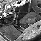Abandoned car by John Fleming