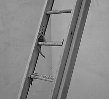 Old Ladder by John Fleming