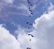 RAF Falcons by Mark Peplow