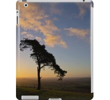 Lone wind shaped tree iPad Case/Skin