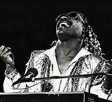 Stevie Wonder by Chet  King