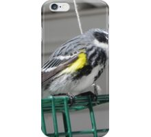 Myrtle Warbler iPhone Case/Skin