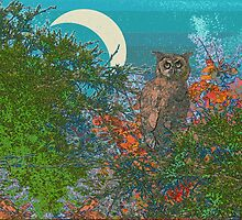 Owl In the Moonlight by Deborah Dillehay