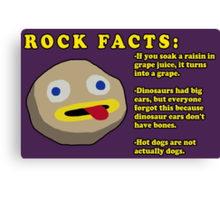 Fact Rock, WITH FACTS! Canvas Print