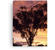 Morning Canberra  Canvas Print