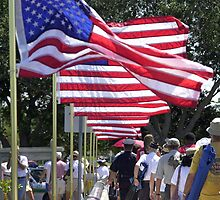 Memorial day flags by Larry  Grayam