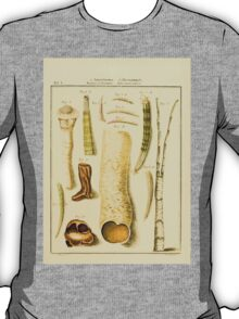 Neues systematisches Conchylien-Cabinet - 083 - Entalia et Dentalia and Tubi vermiculares T-Shirt