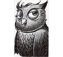 Owl O'brian Photographic Print