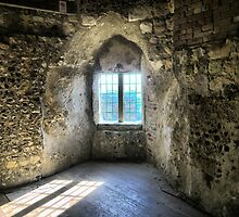 Window at Lewes Castle ( 9 ) by Larry Lingard-Davis