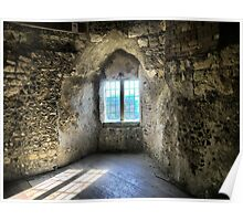 Window at Lewes Castle ( 9 ) Poster