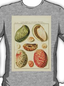 Neues systematisches Conchylien-Cabinet - 098  - Aures marinae latae and angustifores and imperforatae T-Shirt