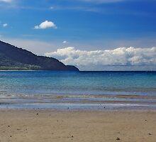 Cape Tribulation Beach by Tainia Finlay