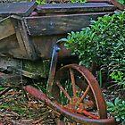 Wheelbarrow garden planter by Rick Fin