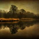 Misty Reflections by Karl Williams