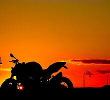 Streetfighter Sunset by Shaynelee