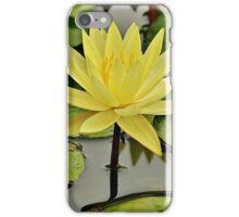 Across the magic ponds of Piedmont iPhone Case/Skin