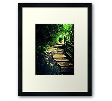 The Hole in the Trees Framed Print