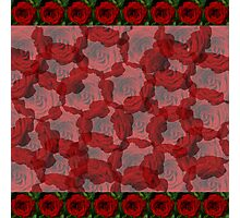 Rose Cluster  Photographic Print