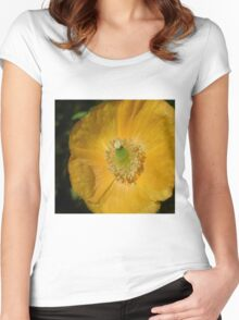 Welsh Poppy Macro Women's Fitted Scoop T-Shirt