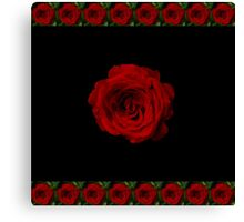 Rose in bloom on black Canvas Print