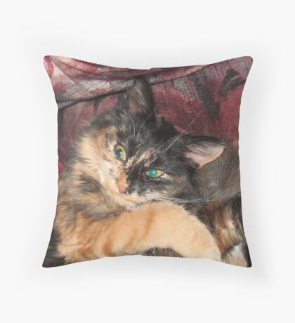 A Touch of Madness Throw Pillow