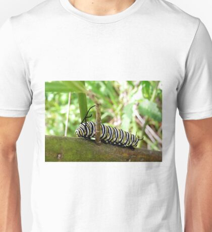 Monarch Butterfly caterpillar (Danaus Plexippus) Unisex T-Shirt