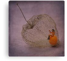 Physalis - Amour en cage Canvas Print