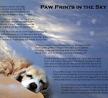 Paw Prints in the Sky by Polly Peacock