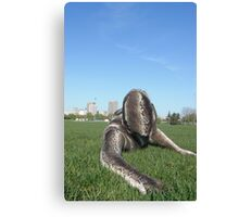 Sssssnake in the Grass 1 Canvas Print