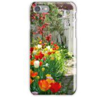 Color-Blaze iPhone Case/Skin