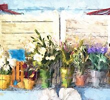 Country Porch Flowers [Gary Guthrie] by garyguthrie