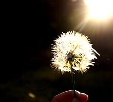 Wishes at my fingertips by Fiona Christensen