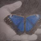 Butterfly by ReadingBeauty