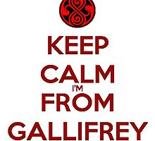 Keep Calm I'm From Gallifrey by PhoenixDagger