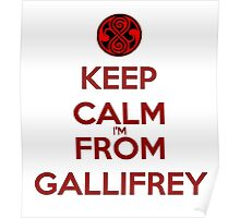 Keep Calm I'm From Gallifrey Poster
