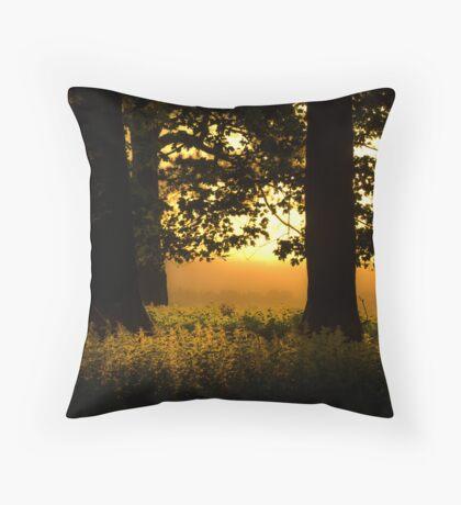 A Glimmer Of Light  Throw Pillow