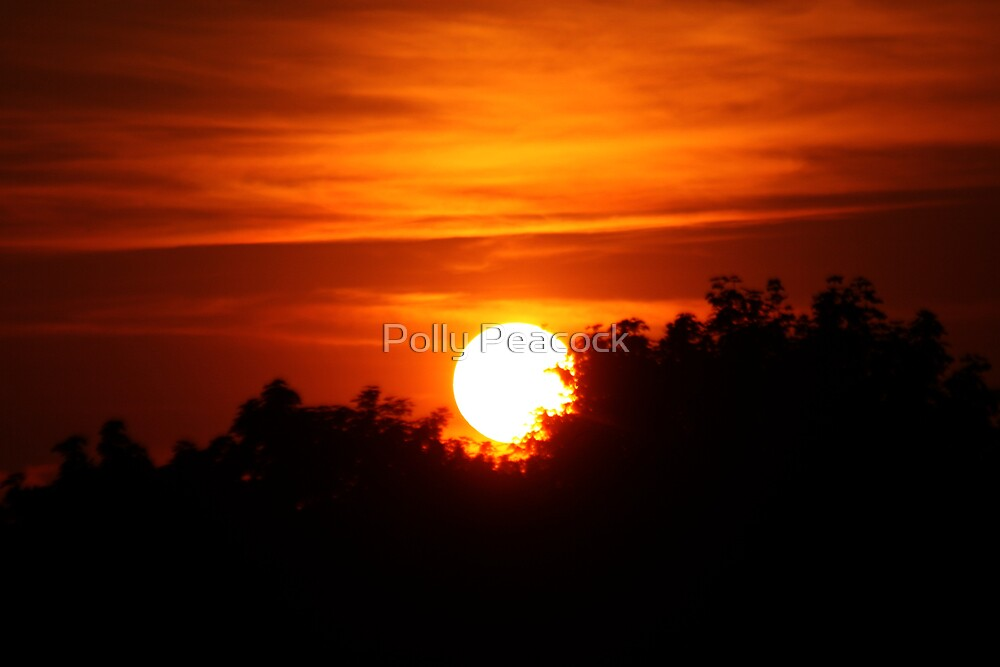 Silhouetted Sunset by Polly Peacock