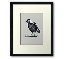 Magpie - Dedicated to family Framed Print