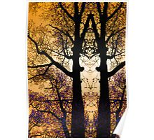 Tree Tracery Poster