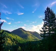 Siskiyou Wilderness, Del Norte County, California, USA by Mike Kunes