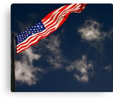 Flag III Canvas Print