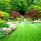 A View of Sunken Garden in Springtime! by Carol Clifford