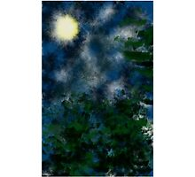 Bushes in moonlight Photographic Print
