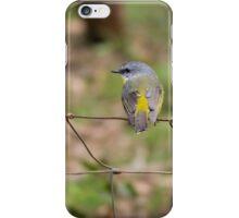 Eastern Yellow Robin #3 iPhone Case/Skin