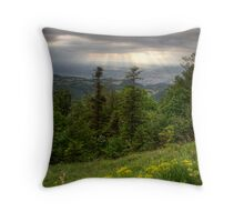 After a Thunderstorm Throw Pillow