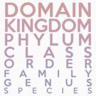 Domain, Kingdom, Phylum, Class, Family, Genus, Species by jezkemp
